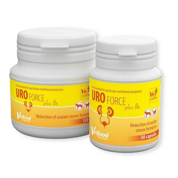Vetfood Uro Force PLUS B6
